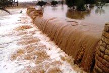 سیل 770 میلیارد ریال به بخش کشاورزی پلدختر خسارت وارد کرد