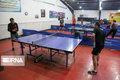 نفرات برتر مسابقات تنیس روی میز خراسان شمالی معرفی شدند
