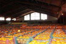 میوه تنظیم بازار استان یزد در 193 مرکز توزیع می شود
