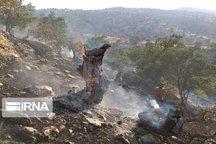 آتشسوزی کوه تنوش ایذه مهارشد