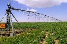 مصرف 93 درصد آب تولیدی لرستان در بخش کشاورزی