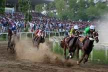 مسابقات اسبدوانی گنبدکاووس به ایستگاه آخر رسید