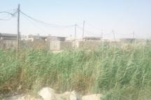 تجمع فاضلاب در برخی مناطق هندیجان نگران کننده است