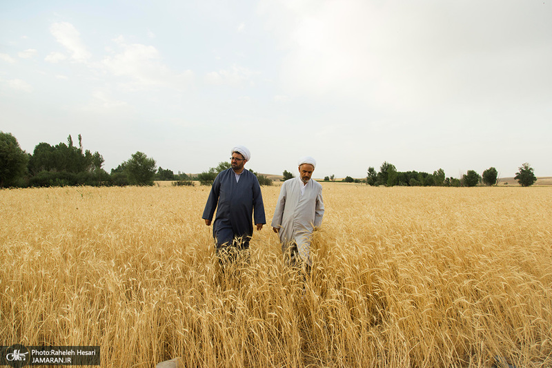 جمع آوری زکات در شهرستان «خدابنده»