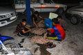 کودکان کار بدون خویشاوند به مراکز شبه خانواده واگذار می شوند