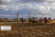 برترینهای هفته چهارم مسابقات کورس اسب کشور در اهواز مشخص شدند