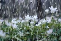 80 میلیمتر بارندگی در روستای منشاد شهرستان تفت ثبت شد