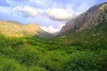 رفع تصرف 59 هکتار از اراضی ملی در اشنویه