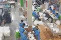 واحد تولید ماسک و دستکش در شهرک صنعتی بجنورد شروع به کار کرد