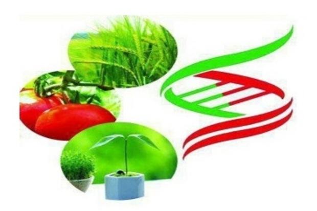 مهلت شرکت در جشنواره ایده های کشاورزی تمدید شد