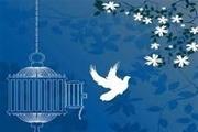 ۱۱ نفر از زندانیان جرائم غیرعمد استان کرمان آزاد می شوند