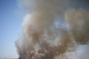 ترس صهیونیست ها از آتش فلسطینی ها/ وقوع 10 آتش سوزی بزرگ در جنوب فلسطین اشغالی