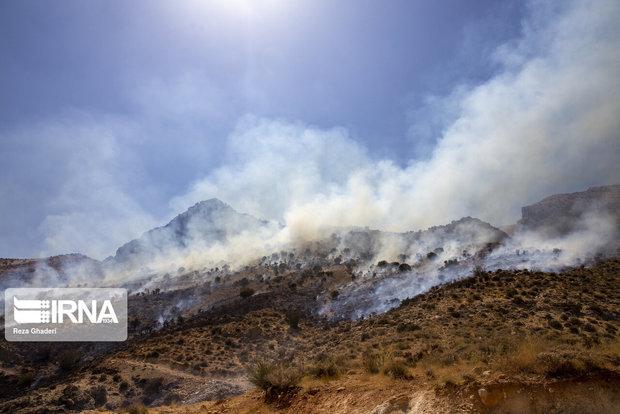 ۵۰۰ هکتار از اراضی ملی بادامستان شهرستان طارم خاکستر شد