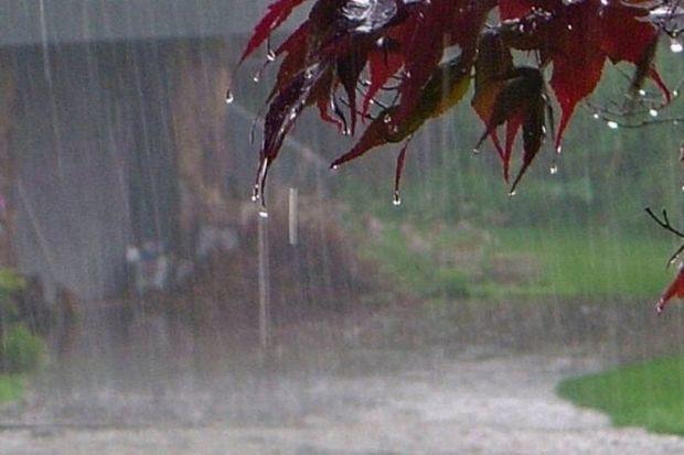 ۲ سامانه بارشی بوشهر را تحت تاثیر قرار میدهد