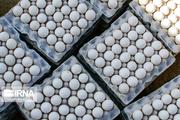 ۲ واحد غیرمجاز بستهبندی تخم مرغ در مراغه پلمب شد