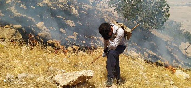 گلایه فعالان محیط زیستی درباره کم کاری در اطفای حریق جنگل های کوهدشت: طوری رفتار می کنند که انگار اتفاقی نیفتاده است