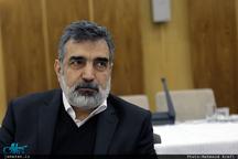 سخنگوی سازمان انرژی اتمی: پرونده پی ام دی در شورای حکام آژانس بسته شده است