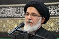 عضو مجلس خبرگان رهبری: نمی توان هیأت را به تعطیلی کشاند