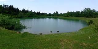 احیاء آب بندانها راهکار برون رفت از مشکل کمبود آب زراعی در شالیزارهای گیلان