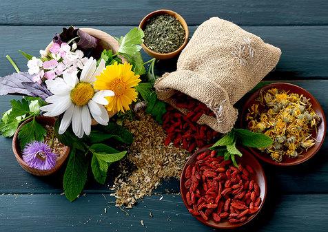درمان گیاهی بیماری ها در خانه / از عفونت ها و سرماخوردگی تا دندان درد و بواسیر