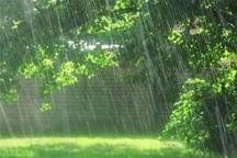 باد و باران کرمانشاه را فرا گرفت