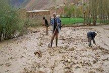 سیل به 174 هکتار از اراضی کشاورزی خراسان شمالی خسارت زد