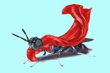 حشرهای که میتواند بشریت را از نابودی نجات دهد!