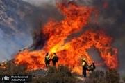 کالیفرنیا 72 ساعت است در آتش می سوزد+ تصاویر