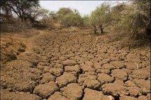 رفع بحران آب کشاورزی با تغییر الگوی کشت