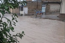 بارش شدید باران موجب آب گرفتگی و خسارت در ایذه شد