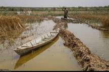 51هزار هکتار از اراضی سیل زده خوزستان از آب تخلیه شد