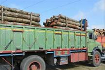 2 5 تن چوب جنگلی قاچاق توسط پلیس زنجان کشف شد