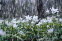 هوای لرستان بارانی میشود
