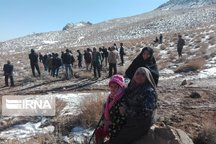 فرماندار نی ریز : هیچ موردی از کوه خواری در جهسک مشکان رخ نداده است