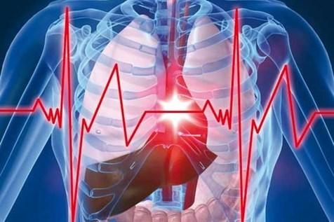 هوش مصنوعی در ۱۰ ثانیه بیماری قلبی را شناسایی کرد
