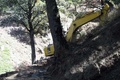 دوگانه تفریح و تخریب در جنگل ابر شاهرود